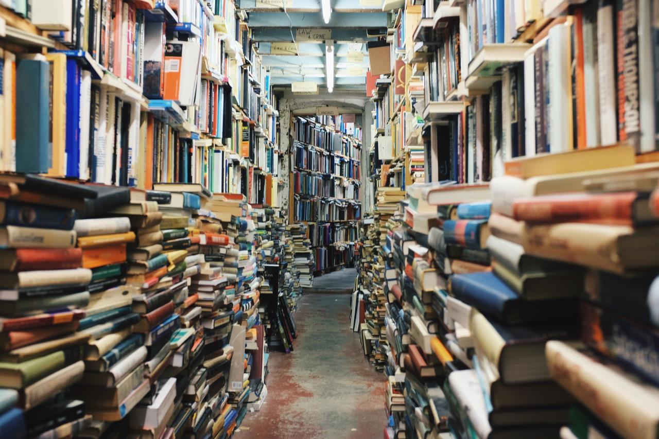Full Library Shelves