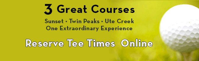 3-Great-Courses