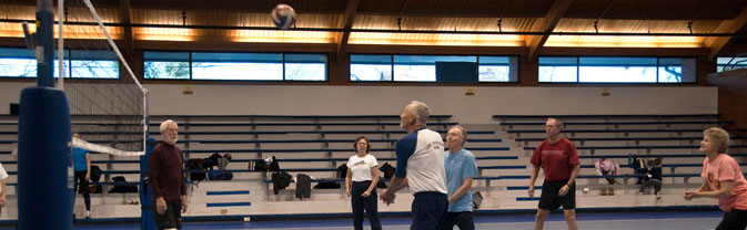 senior volleyball league sport sports