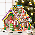 Holiday Gingerbread House Building at the Library