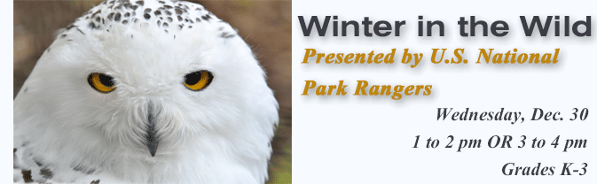 Come to the Library and learn how animals prepare for the winter!