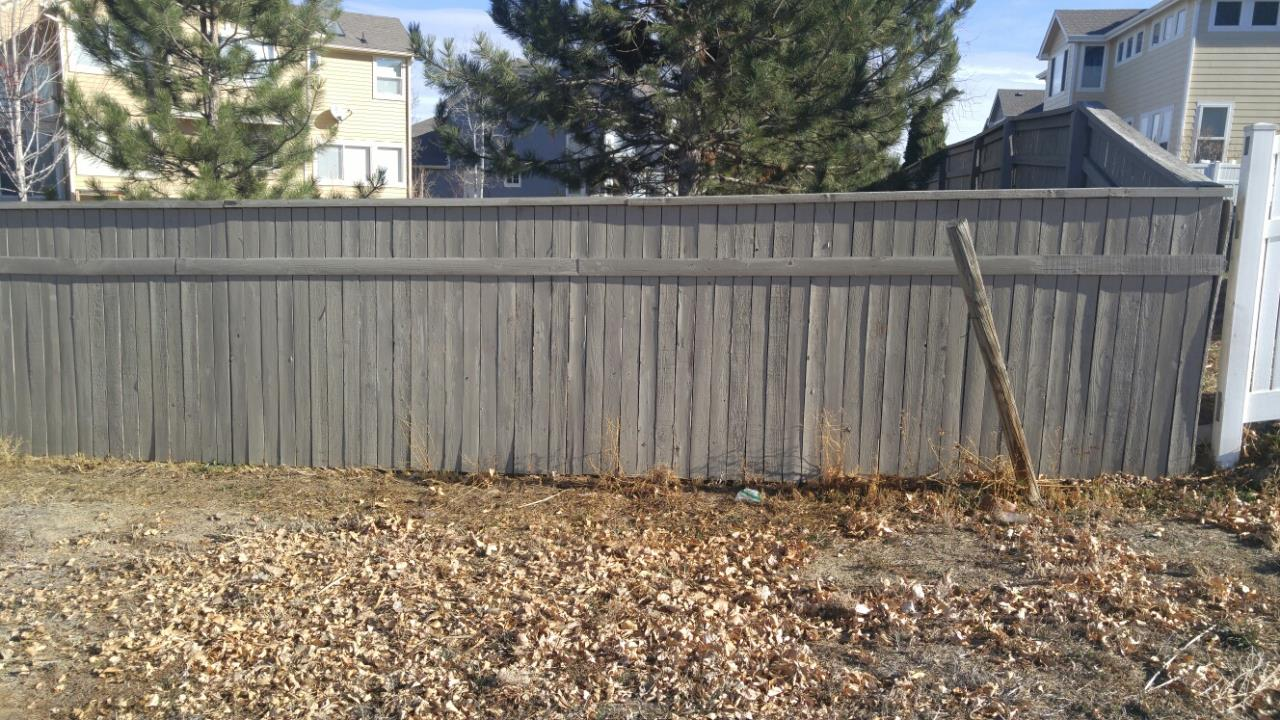Green Fence After