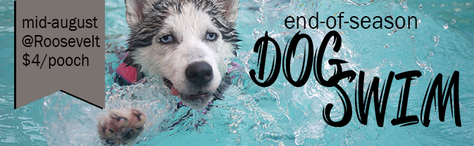 end of season dog swim slider