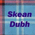 Skean Dubh are bringing their Celtic music to the Library in March.