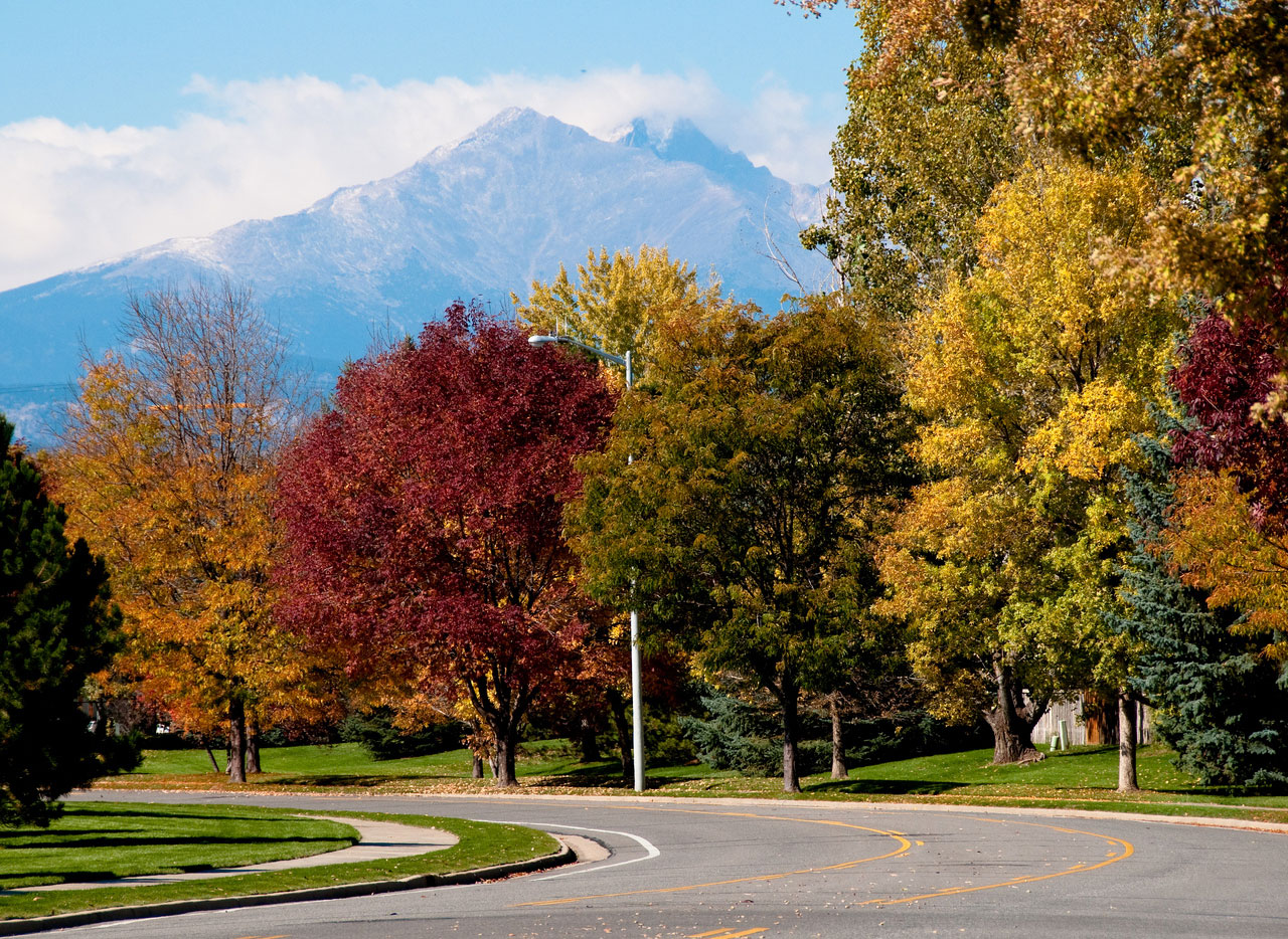 Fall Colors Longmont Neighborhood