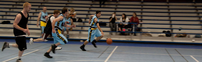 adult athletics basketball league memorial dribble sports