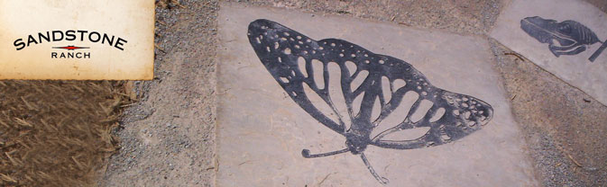 butterfly art at Sandstone Ranch Playground Area