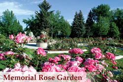 memorial-rose-garden-wedding-venue-rental
